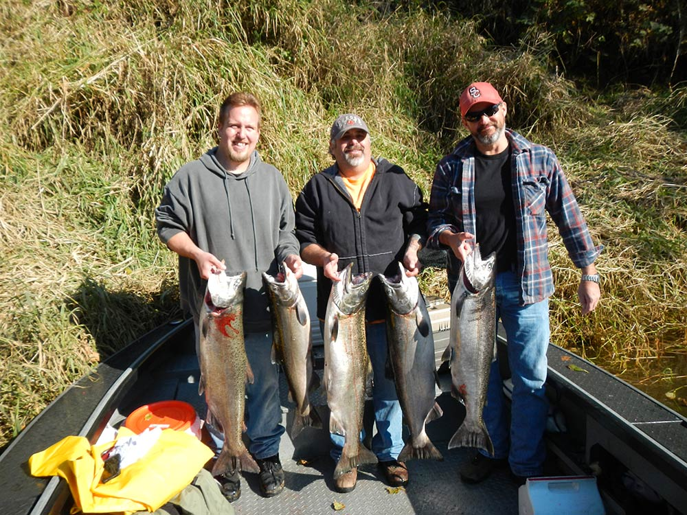 Fall Chinook, October 13, 2013